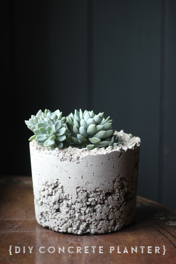 make it diy concrete planters growing spaces. Black Bedroom Furniture Sets. Home Design Ideas