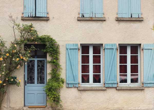 Beautiful French blues  Growing Spaces