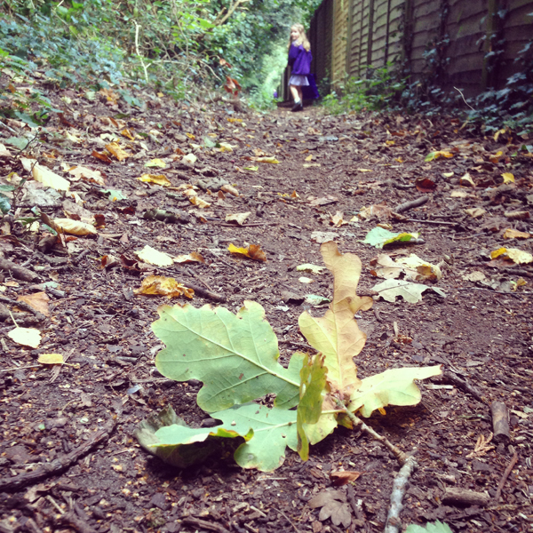 Autumn school run | Growing Spaces
