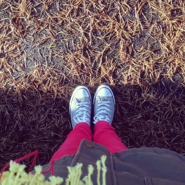 While I was walking | Growing Spaces