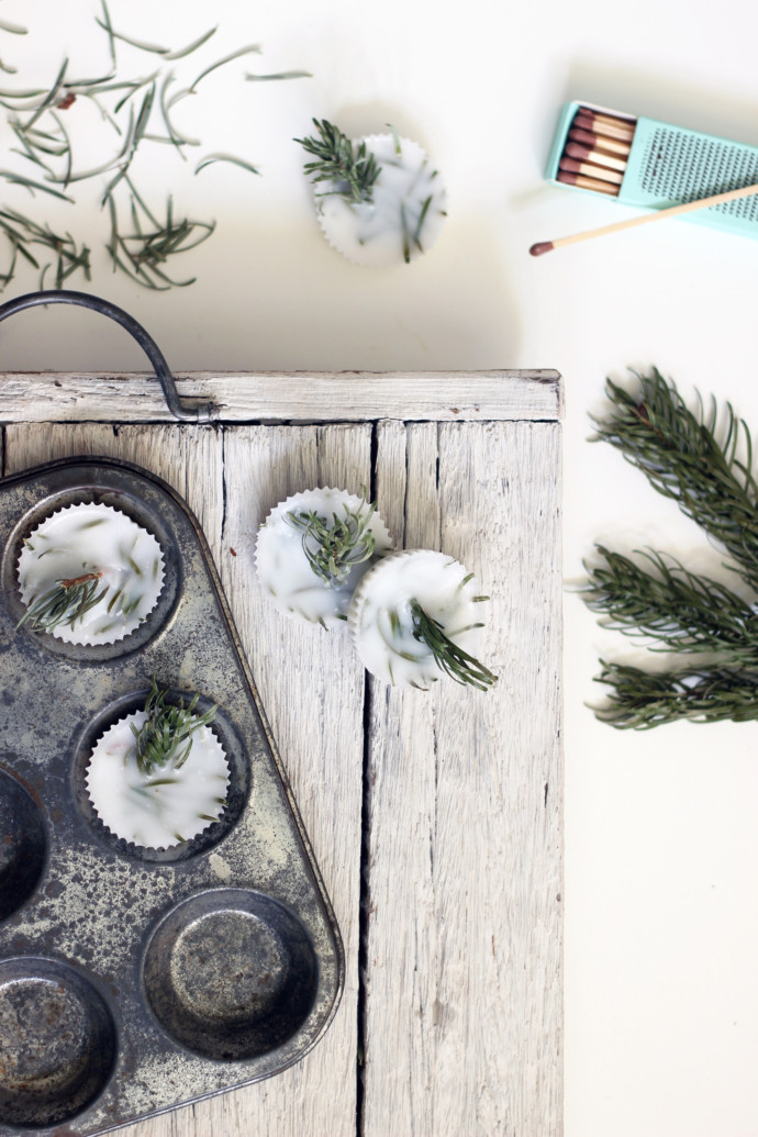 5 ways to upcycle your Christmas tree | Growing Spaces