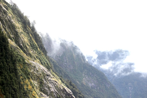 Doubtful Sound | Growing Spaces