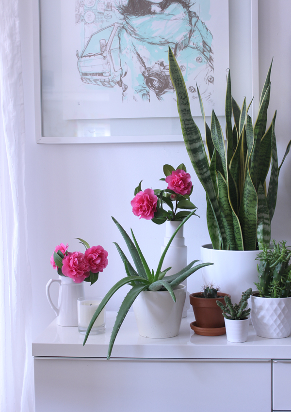Styling the Seasons March | Growing Spaces