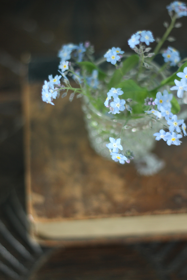 Forget-me-not posy | Growing Spaces