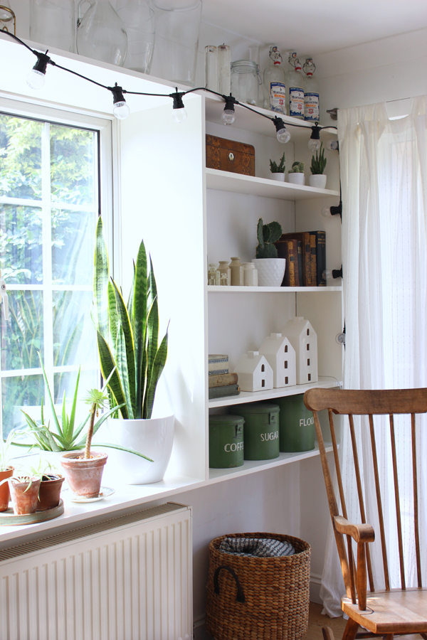 DIY shelves for display | Growing Spaces