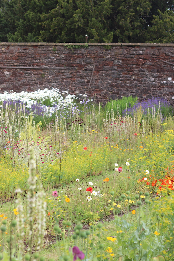 The walled garden at Harptree Court | Growing Spaces