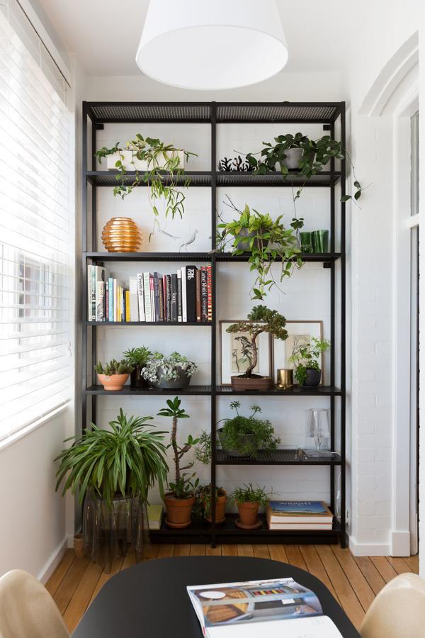 Styling tips for open shelving   Growing Spaces