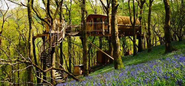 pen-y-bryn-in-bluebells-living-room-treehouses_cs_gallery_preview