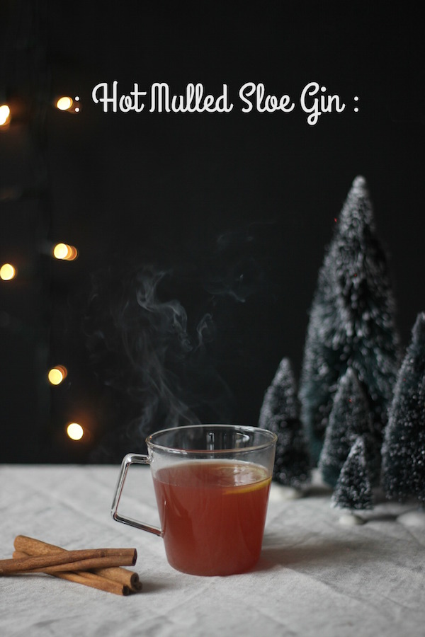 Pin it! The ultimate hot mulled sloe gin recipe | Growing Spaces
