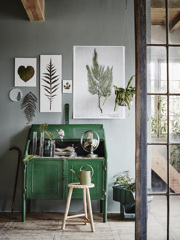 5 ways to decorate with green | Growing Spaces
