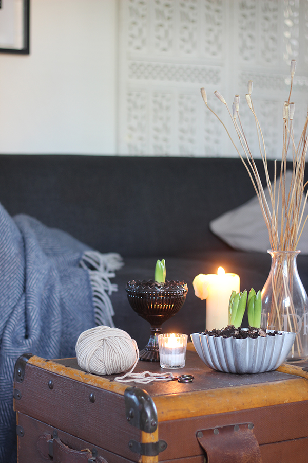 January styling the seasons | Growing Spaces