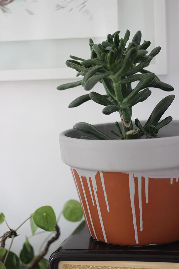 DIY paint drip plant pot | Growing Spaces