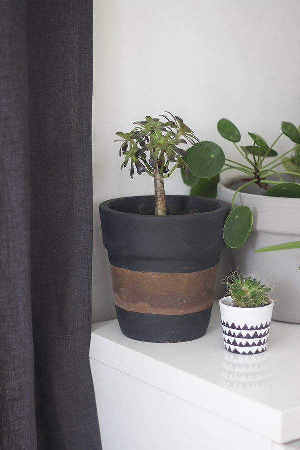 DIY painted stripe plant pot | Growing Spaces