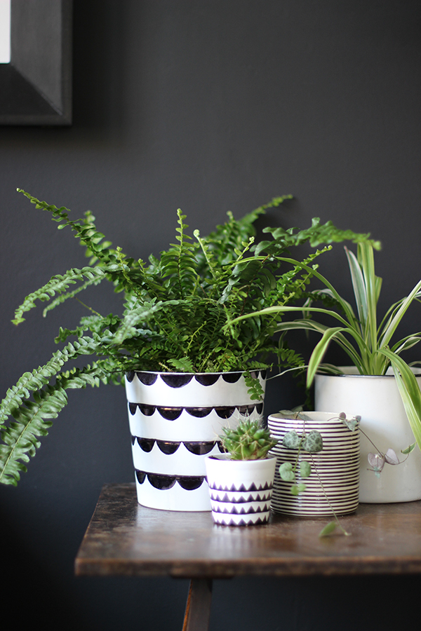 DIY Sharpie plant pot tutorial