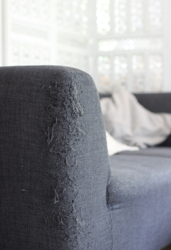 Fix a frayed sofa arm | Growing Spaces