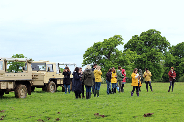 Knepp wildland safari with Canopy & Stars
