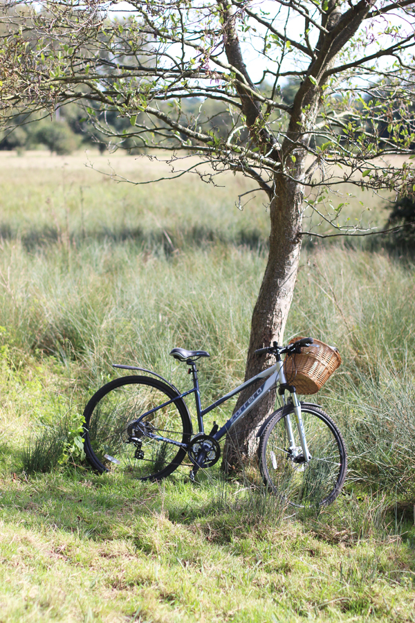 An autumn bike ride and review of the Carrera Crossfire 2 from Halfords